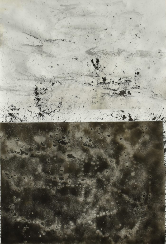 Early Morning Birds, 2020, soot and water on paper, 100 x 70 cm